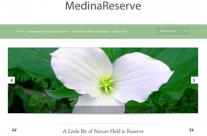 Medina Reserve